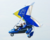 Flex-wing microlight
